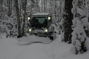 Grooming Trails